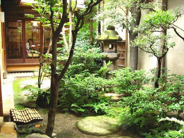 bonsa mania le jardin japonais. Black Bedroom Furniture Sets. Home Design Ideas